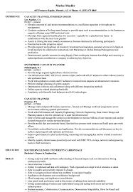 Capacity Planner Resume Samples Velvet Jobs