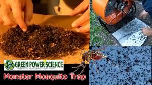 mosquito trap zika pesticide free control solar stop zika virus prevention diy you
