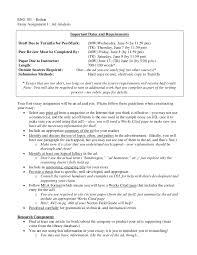 essay ad analysis