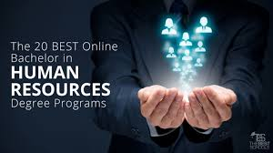 Accredited Online Interior Design Programs Beauteous The 48 Best Online Bachelor In Human Resources Degree Programs