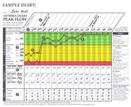 Pediatric Peak Flow Chart The Asthma Peak Flow Diary A Powerful Tool For Managing Asthma
