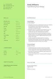 Free Resume Template 28 Wozber