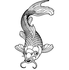 Small Picture Drawing Koi Fish Coloring Pages Drawing Koi Fish Coloring Pages