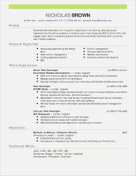 Online Resumes For Employers Online Resumes For Employers Fresh Web Developer Resume Examples Pdf