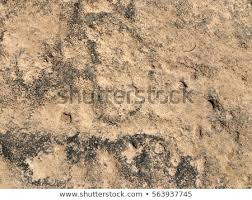 natural stone floor texture. Closeup Natural Stone Floor Texture Background L