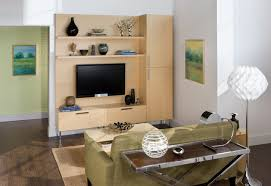 Small Picture Eco Friendly Bamboo Wall Unit Modern Living Room New York