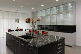 Cabinet With Frosted Glass Doors Kitchen Modern Kitchen Cabinet Ideas Pretty Kitchen Cabinet Dark