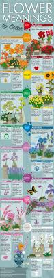 infographic feng shui. Flower Meanings By Color | Feng Shui Infographics The Tao Of Dana Infographic F