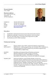 Format Of Professional Resume Cool Curriculum Vitae Example Doc