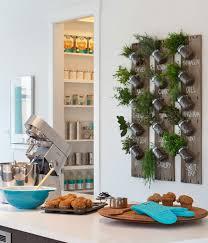 Kitchen Herb Planter  Indoor Herb Planter  Eat Well 101