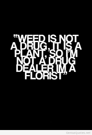 Quotes About Drugs Magnificent Quotes About Drug 48 Quotes