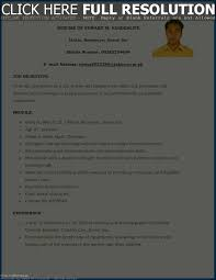 Filipino Resume Sample Resume Template