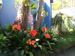 Small Picture Garden Ideas Brisbane Tropical Best Gardens In The Couriermail