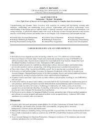 Sales Executive Sample Resume Car Sales Resume Sample Ideas ...