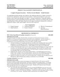 resume writing service meganwest co resume writing service