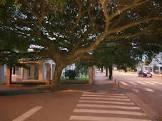 image de Horizontina Rio Grande do Sul n-9