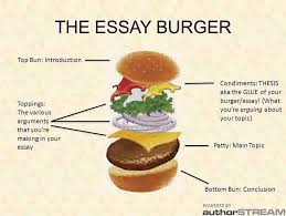 essay paragraph structure teel google search essays  essay paragraph structure teel google search