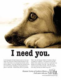 humane society ads. Unique Ads Volunteer It Can Save YOUR Life In The Process And Humane Society Ads B