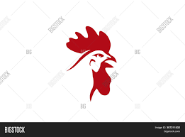 Big Red Rooster Design Creative Red Rooster Vector Photo Free Trial Bigstock