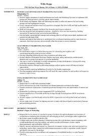 Marketing Manager Lead Resume Samples Velvet Jobs