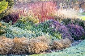 garden ideas border ideas plant binations flowerbeds ideas fall borders winter