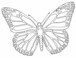 Free Butterfly Printable Butterflies Outlines Nlli Coloring