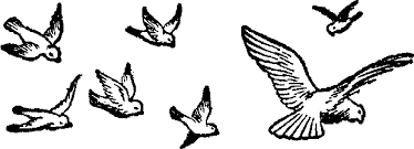flying bird clipart black and white. Wonderful Clipart Birds Flying Black And White Clipart 1 Intended Bird R