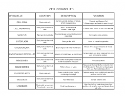 45 Described Cell Organelles With Their Functions