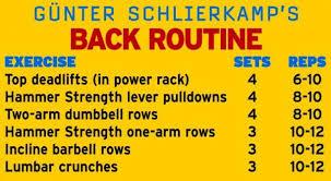 Gunter Schlierkamp Back Barbell Row Back Routine Power Rack