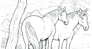 Horse Coloring Pages To Print For Free Wild Horse Coloring Pages