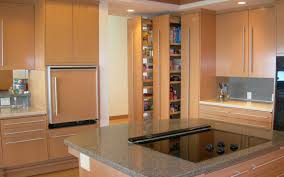 Compact Kitchen Modern Compact Kitchen Interior With Pantries And Bar Ideas