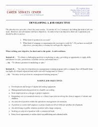 Resume Objective For Promotion Objective Examples For Resume New Excellent Resume Objectives 3