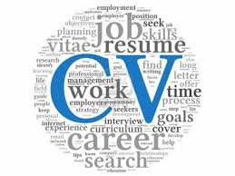 Help With Writing A Resume Professional Cv Resume Writing From 20 Free Cv Review