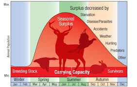 What Does Carrying Capacity Mean In Ecology Example