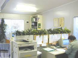 office planter boxes. planter boxes look great in any office ask green design at wwwgreendesign