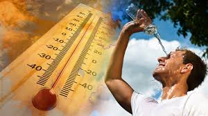 Yerküre 2050'de 6 derece daha ısınabilir