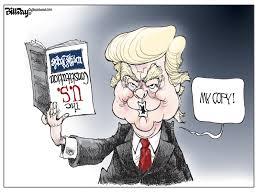 Editorial Cartoon U S Constitution Politics Political