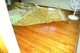 rug pads for wood floors felt pads for hardwood floors large size of felt rug pad hardwood floors cleaning how do