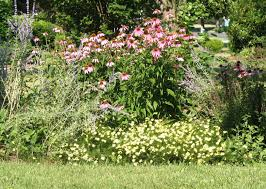 Small Picture Views from the Garden Design a perennial flower bed for blooms
