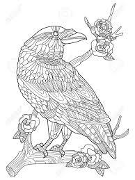 カラス鳥大人ベクトル イラストの塗り絵大人のための着色抗ストレス入れ墨のステンシルですzentangle