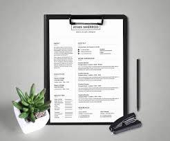 Cover Letter Software Developer Professional Software Developer