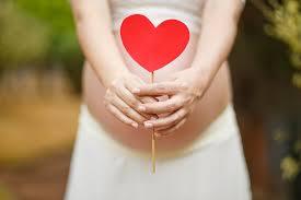 pregnancy essay ph sasse pregnancy yoga essay gillian kiely veins vs arteries essays are custom essay writing