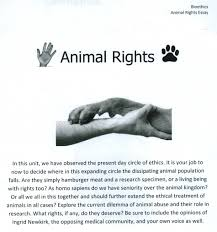 tips for writing an effective animal right essay as time has progressed the guidelines by which humans and animals live by allows each species to coexist each other animal testing is done in various