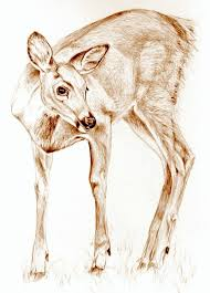 art sepia drawing deer in the garden dear nature art print of original pencil drawing free s