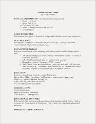 Volunteer Work Examples For Resume Unique Volunteer Resume Sample