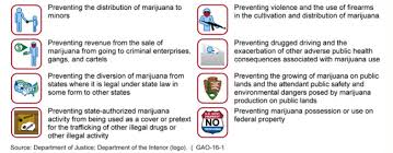 federal law about marijuana
