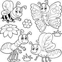 Small Picture Image result for insect colouring pages worm Blackline Images