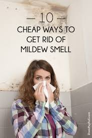 Get Mildew Smell Out Of Carpet