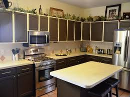Painted Black Kitchen Cabinets 20 Kitchen Cabinet Colors Ideas Kitchen Color Gallery Kitchen