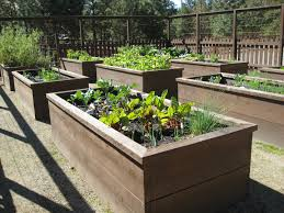 garden raised ideas fancy inspiration beds design on home bed irrigation drip for vegetable designing a